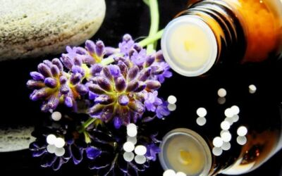 Things to Consider When Looking for the Best Pediatric Naturopath